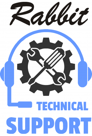 Technical Support $100